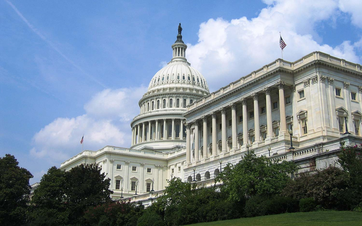 Tell Congress Now: Support Early Diagnosis of Kidney Disease